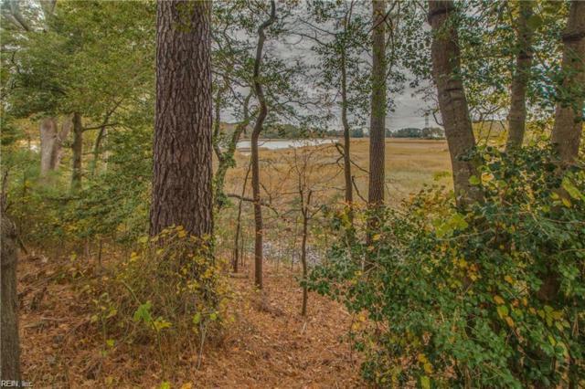 2106 Soundings Crescent Ct, Suffolk, VA 23435 (#10241697) :: Reeds Real Estate