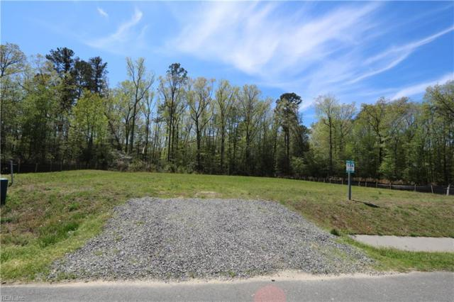 2260 Moonlight Pt, James City County, VA 23185 (#10243792) :: AMW Real Estate