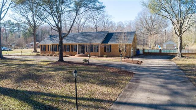 3208 Martin Johnson Rd, Chesapeake, VA 23323 (#10245423) :: Atkinson Realty