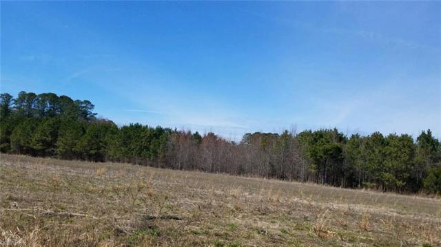 Lot 11 Oberry Church Rd, Franklin, VA 23851 (#10245584) :: 757 Realty & 804 Homes