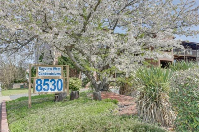 8530 Tidewater Dr #311, Norfolk, VA 23503 (#10246573) :: Upscale Avenues Realty Group
