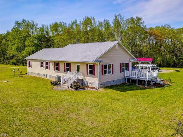 15009 Trump Town Rd, Isle of Wight County, VA 23487 (#10252804) :: Momentum Real Estate