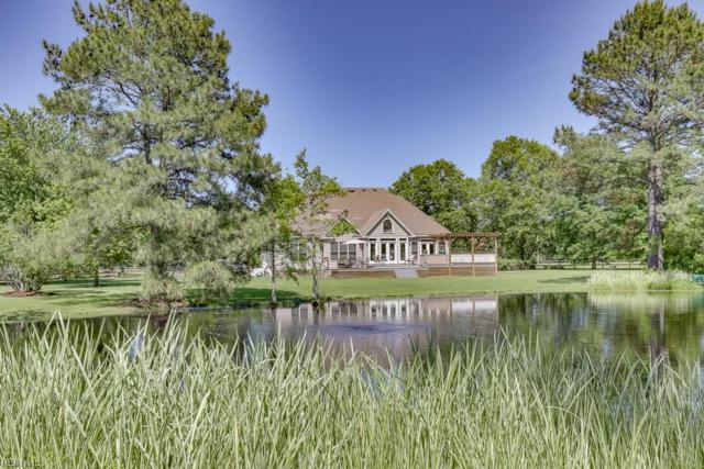2455 Lake Cohoon Rd, Suffolk, VA 23434 (#10256368) :: Abbitt Realty Co.