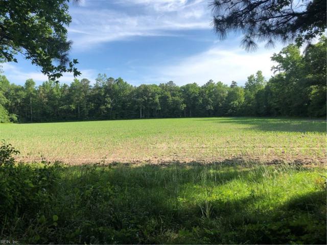 1451 Dutch Rd, Suffolk, VA 23437 (#10258678) :: AMW Real Estate