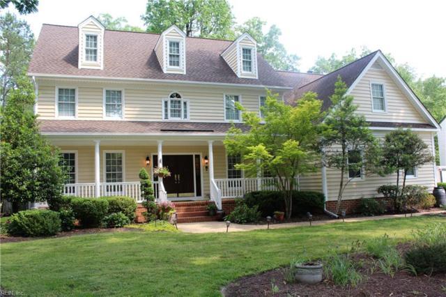 110 Evergreen Way, James City County, VA 23185 (#10259361) :: RE/MAX Alliance
