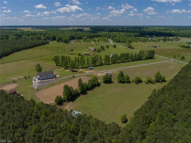 1309 Freeman Mill Rd, Suffolk, VA 23438 (#10259980) :: Abbitt Realty Co.