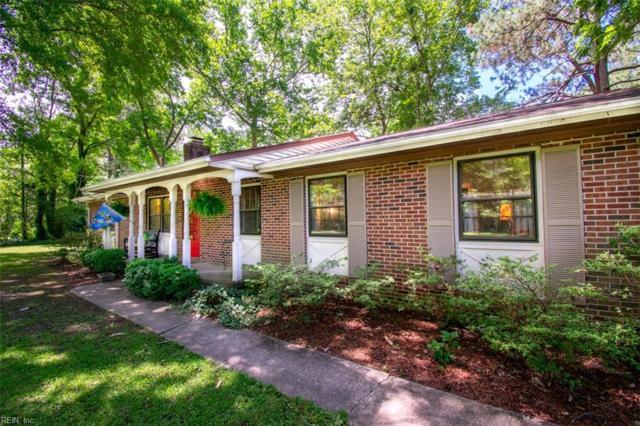 1424 Saint Brides Rd W, Chesapeake, VA 23322 (#10264183) :: AMW Real Estate