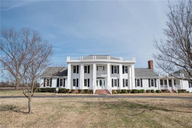 717 School House Rd, Chesapeake, VA 23322 (#10265707) :: The Kris Weaver Real Estate Team