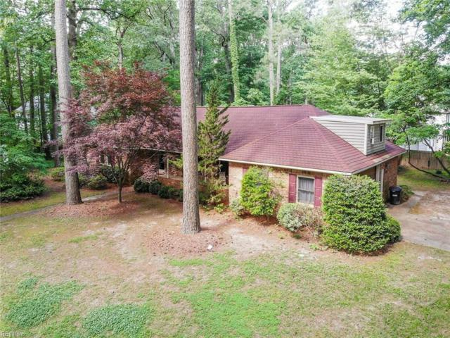 3841 Prince Andrew Ln, Virginia Beach, VA 23452 (MLS #10266829) :: Chantel Ray Real Estate