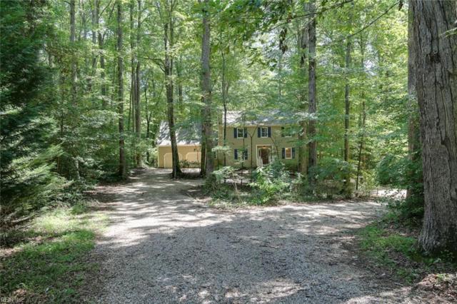 118 Nina Cir, York County, VA 23188 (#10267871) :: Abbitt Realty Co.