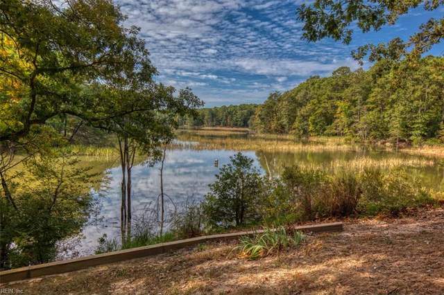 3308 Ash Vw, James City County, VA 23185 (MLS #10286372) :: Chantel Ray Real Estate