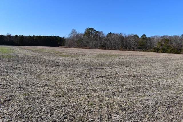 4.6 Ac Bayside Rd, Northampton County, VA 23405 (#10295074) :: Atlantic Sotheby's International Realty