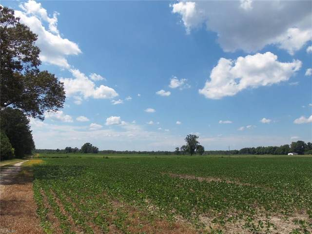 33046 Harvest Dr, Isle of Wight County, VA 23315 (#10327428) :: AMW Real Estate