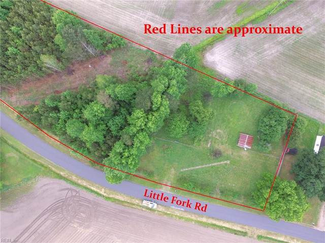 156 Little Fork Rd, Suffolk, VA 23438 (#10331671) :: The Kris Weaver Real Estate Team