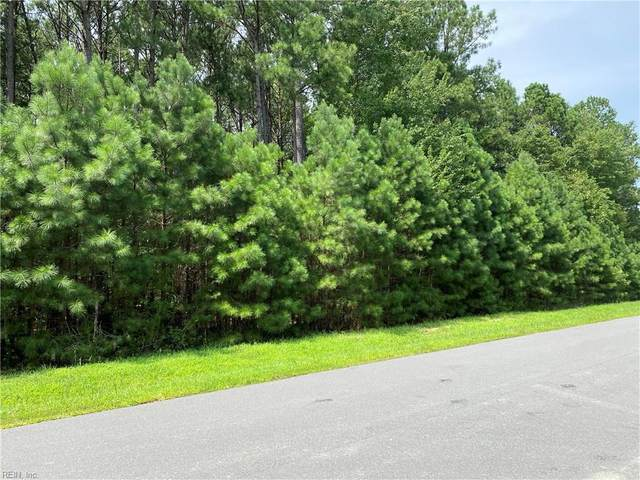 438 Lawnes Neck Dr, Isle of Wight County, VA 23430 (#10336024) :: Abbitt Realty Co.
