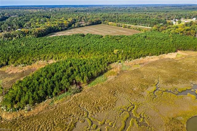 74 Ac Vellines Ln, Isle of Wight County, VA 23314 (#10351981) :: Berkshire Hathaway HomeServices Towne Realty