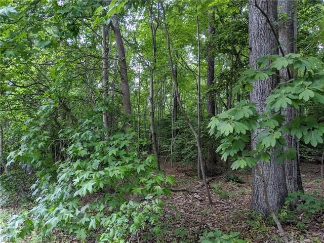8730 Richmond Rd, James City County, VA 23168 (#10378771) :: Berkshire Hathaway HomeServices Towne Realty