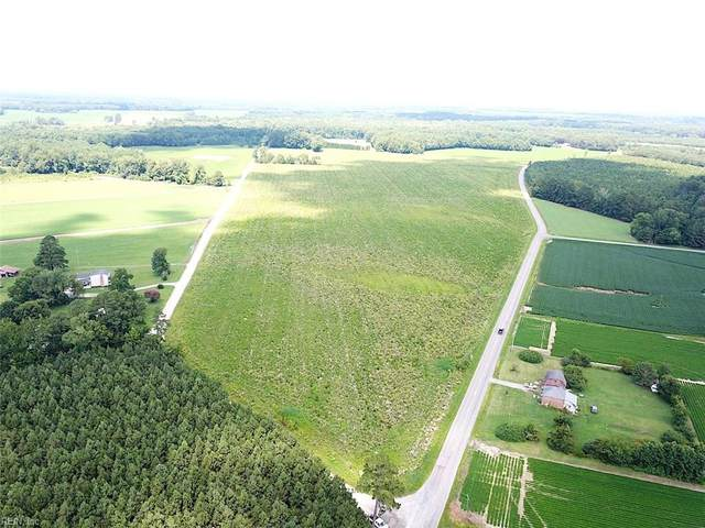 74 Ac Raynor Rd, Isle of Wight County, VA 23430 (#10393303) :: Berkshire Hathaway HomeServices Towne Realty