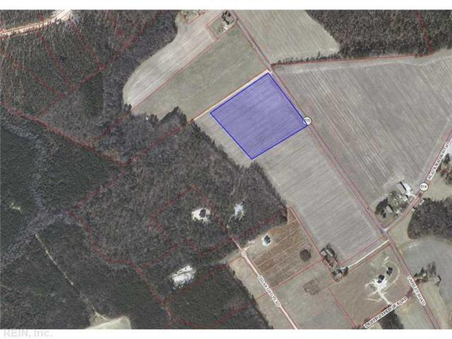 030 Carsley Rd, Surry County, VA 23839 (MLS #1308644) :: Chantel Ray Real Estate