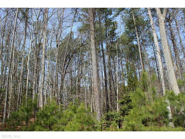 LOT 14 Deerwood Ct, Gloucester County, VA 23061 (#1506099) :: The Kris Weaver Real Estate Team