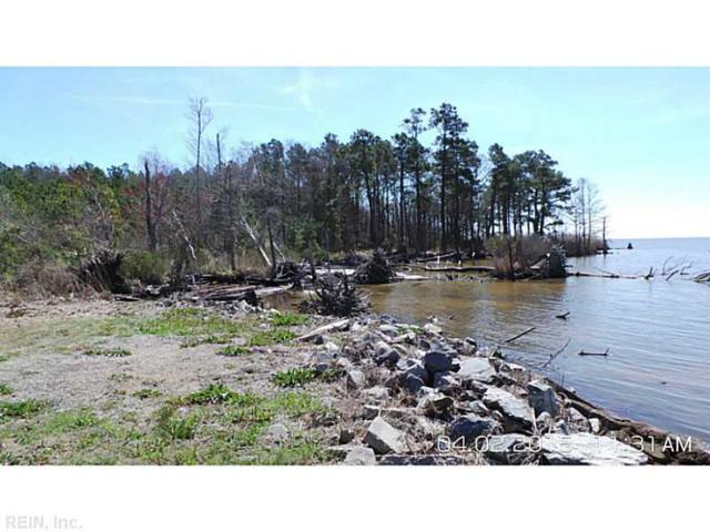 15+ACR Frog Island Rd, Pasquotank County, NC 27909 (#1514503) :: Austin James Realty LLC