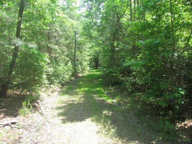 18 Acr Arkansas Farm Rd, Gloucester County, VA 23061 (#1626389) :: Abbitt Realty Co.