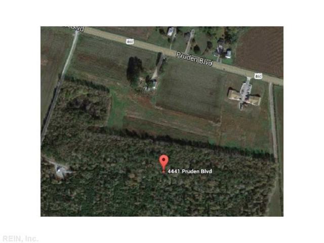 4441 Pruden Blvd, Suffolk, VA 23434 (#1630243) :: Community Partner Group