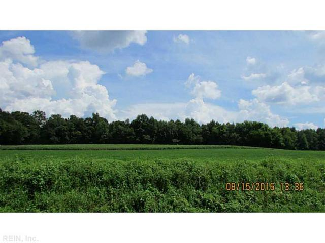 7.15AC Angelico Rd, Southampton County, VA 23829 (#1641039) :: The Kris Weaver Real Estate Team
