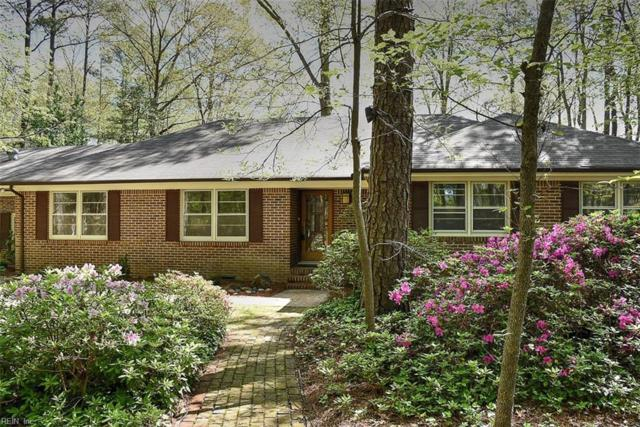 2501 Linehan Ct, Virginia Beach, VA 23454 (#10164715) :: The Kris Weaver Real Estate Team