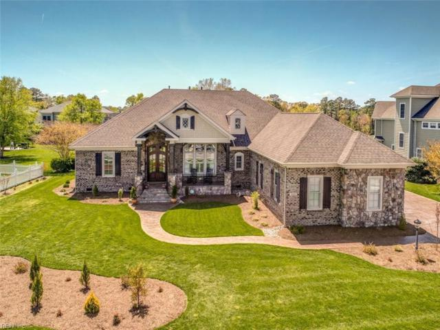 3003 N James Dr, Suffolk, VA 23435 (#10189807) :: Austin James Real Estate