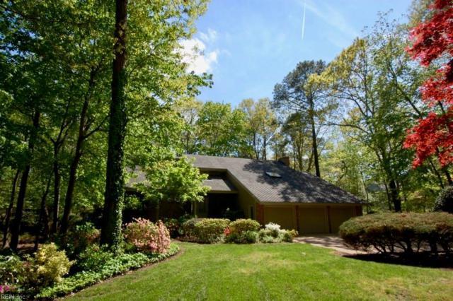 3109 Blair Cir, Virginia Beach, VA 23452 (#10206877) :: The Kris Weaver Real Estate Team