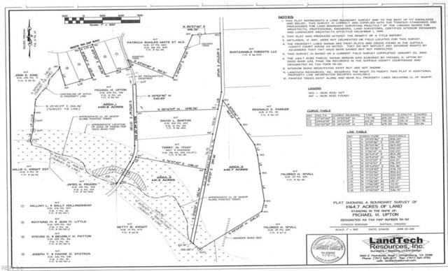 158AC White Marsh Rd, Suffolk, VA 23434 (#10207686) :: Abbitt Realty Co.