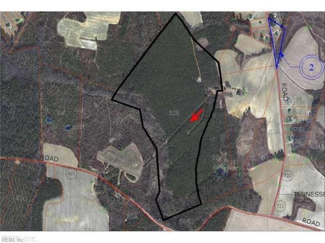 25367 Tennessee Rd, Southampton County, VA 23844 (#10212630) :: The Kris Weaver Real Estate Team