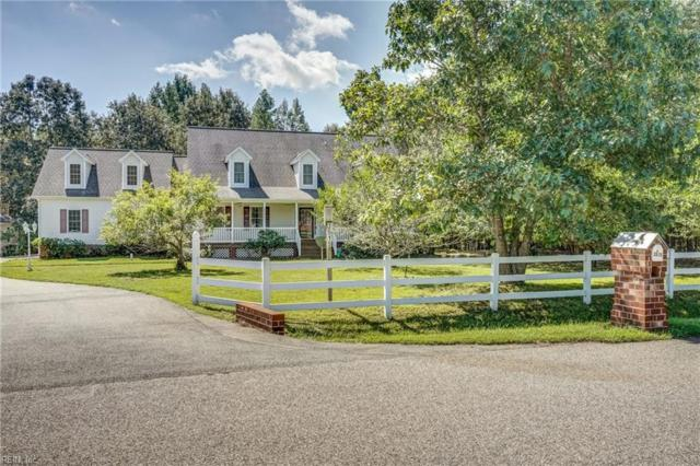 3515 Autumn Hills Ln, New Kent County, VA 23141 (#10217499) :: The Kris Weaver Real Estate Team