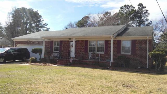 233 Jana Ct, Chesapeake, VA 23322 (#10241293) :: Abbitt Realty Co.
