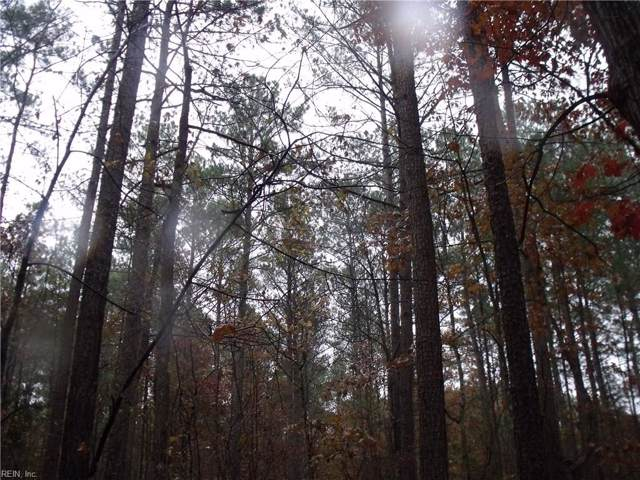 5acs Wilson Rd, Dinwiddie County, VA 23894 (MLS #10289168) :: Chantel Ray Real Estate