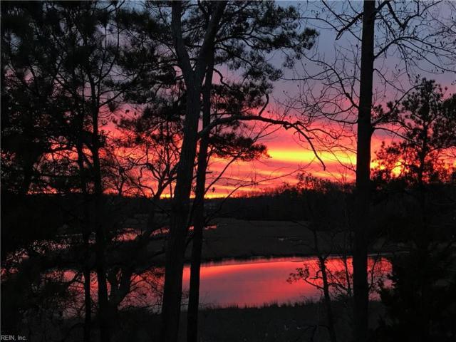 337 Bridgewater Dr, Newport News, VA 23603 (MLS #10159447) :: Chantel Ray Real Estate
