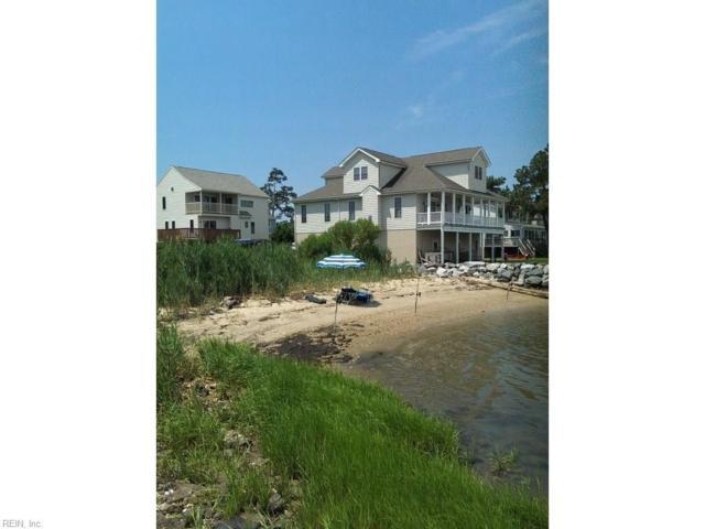 1514 Dandy Loop Rd, York County, VA 23692 (MLS #10196839) :: Chantel Ray Real Estate
