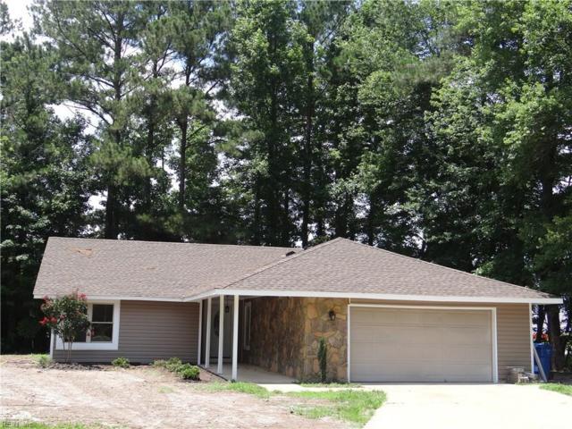 801 Bowling Green Trl, Chesapeake, VA 23320 (MLS #10203465) :: Chantel Ray Real Estate