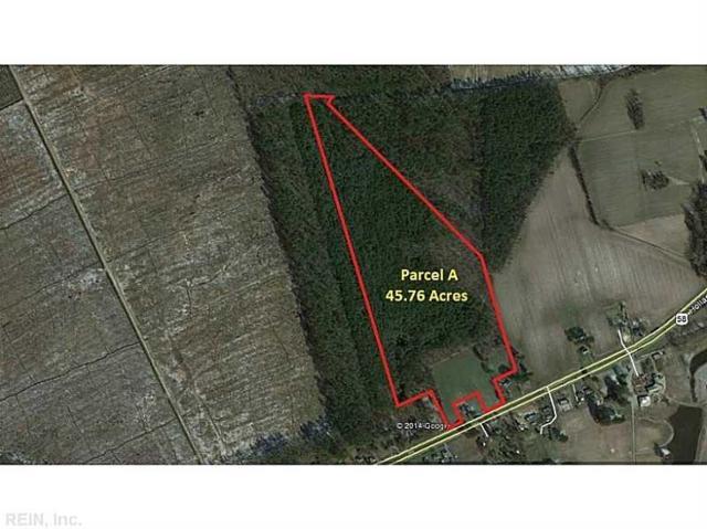 3240 Holland Rd, Suffolk, VA 23434 (#1507350) :: Crescas Real Estate