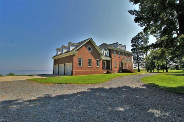 16901 Rivers Edge Trl W, Isle of Wight County, VA 23430 (#10215291) :: AMW Real Estate