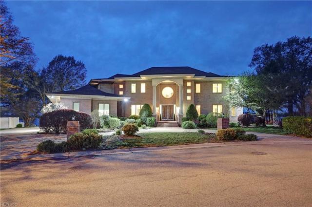 411 Blue Heron Pointe, Suffolk, VA 23435 (MLS #10253638) :: Chantel Ray Real Estate
