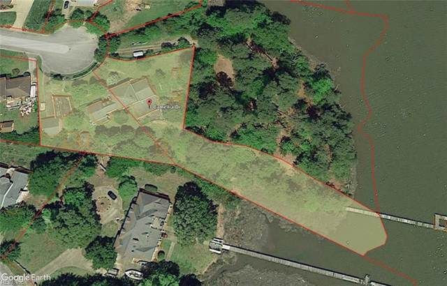 3 Camellia Drive, Newport News, VA 23602 (#10400487) :: Team L'Hoste Real Estate