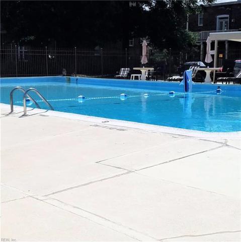 1 Crawford Pw #506, Portsmouth, VA 23703 (#10211614) :: The Kris Weaver Real Estate Team