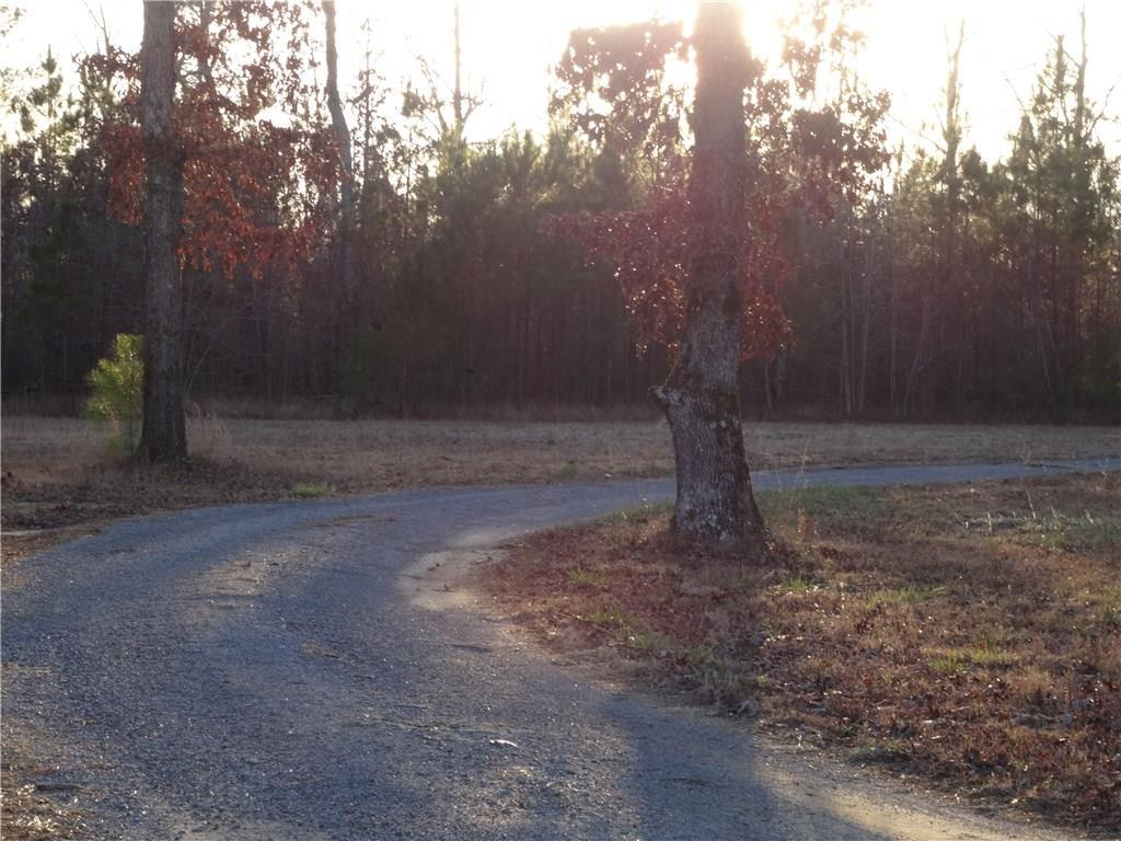 LOT 7 Strawberry Plains Rd - Photo 1