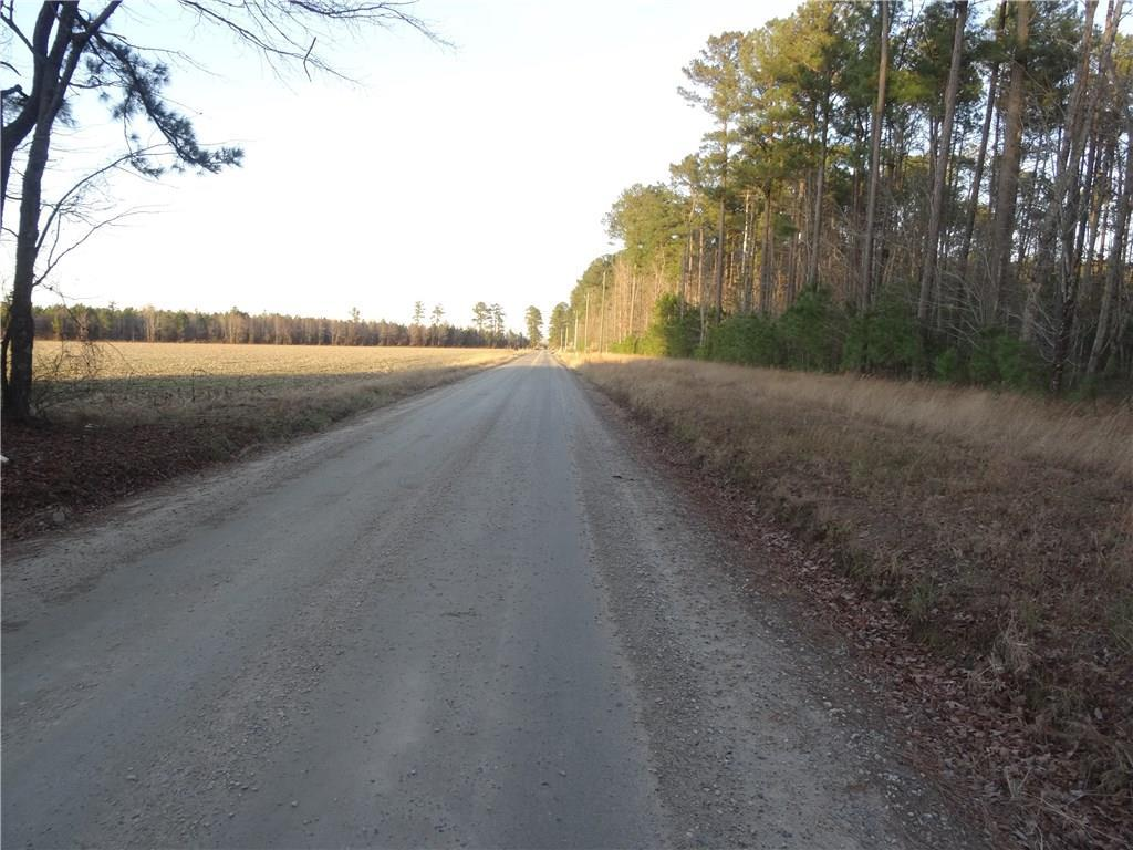 LOT 9 Strawberry Plains Rd - Photo 1