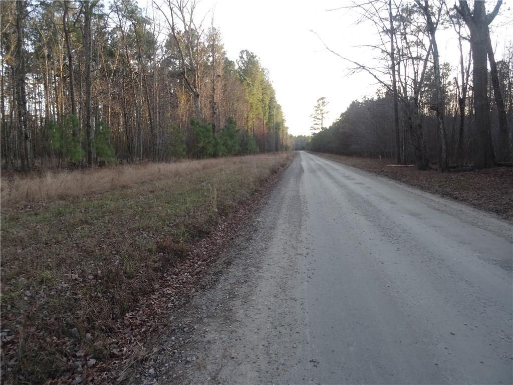 LOT 12 Strawberry Plains Rd - Photo 1