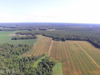 22 Parsons Dr, Isle of Wight County, VA 23487 (MLS #10170551) :: Chantel Ray Real Estate