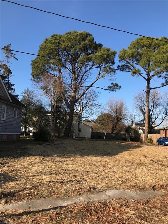 3126 Cape Henry Ave, Norfolk, VA 23509 (MLS #10170889) :: Chantel Ray Real Estate