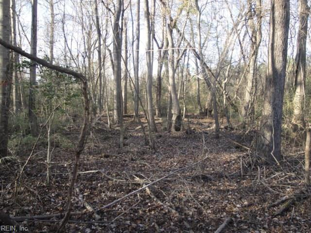 LOT 2 Carolina Rd, Suffolk, VA 23438 (#10175044) :: Abbitt Realty Co.